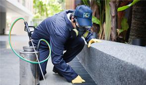 Professional Pest Control Special